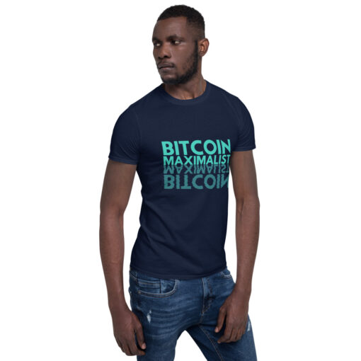 Bitcoin Maximalist Reflection